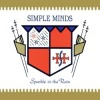Simple Minds - Sparkle In The Rain (30th Anniversary)