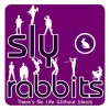 Sly Rabbits - There's No Life Without Ideals